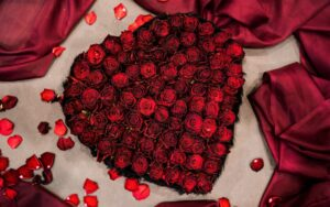Ce sunt trandafirii criogenați ?